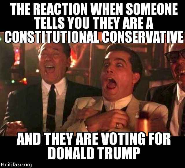 silly-trumpsters-the-reaction-when-someone-tells-you-they-ar-politics-1459697461